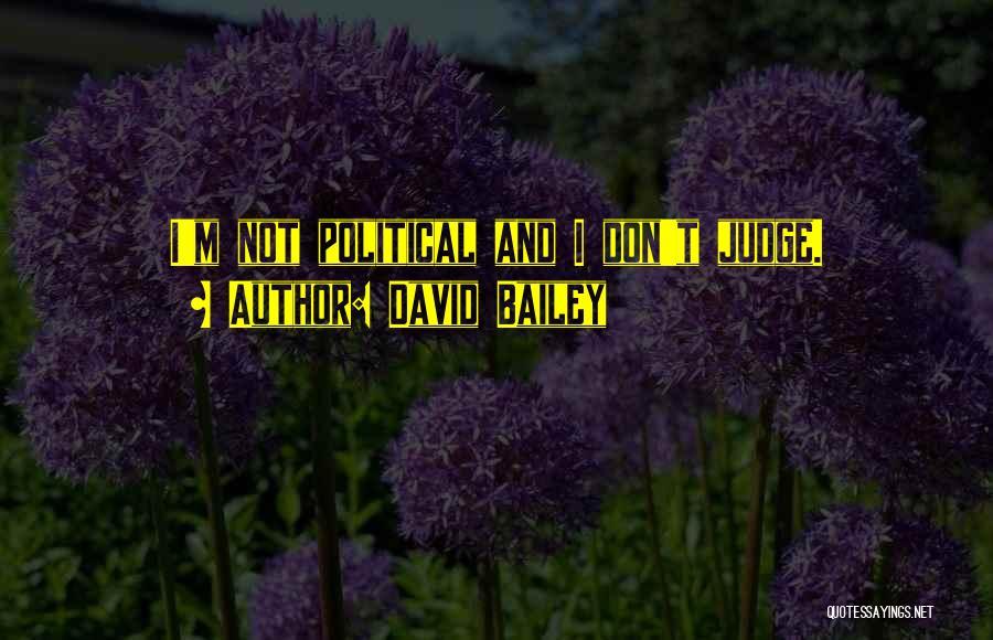 David Bailey Quotes 2184335