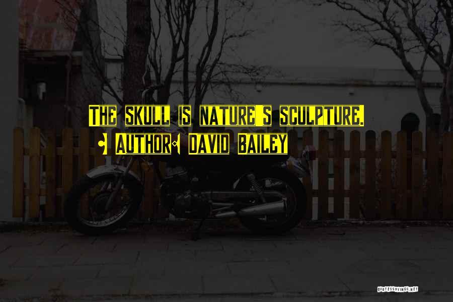 David Bailey Quotes 433377