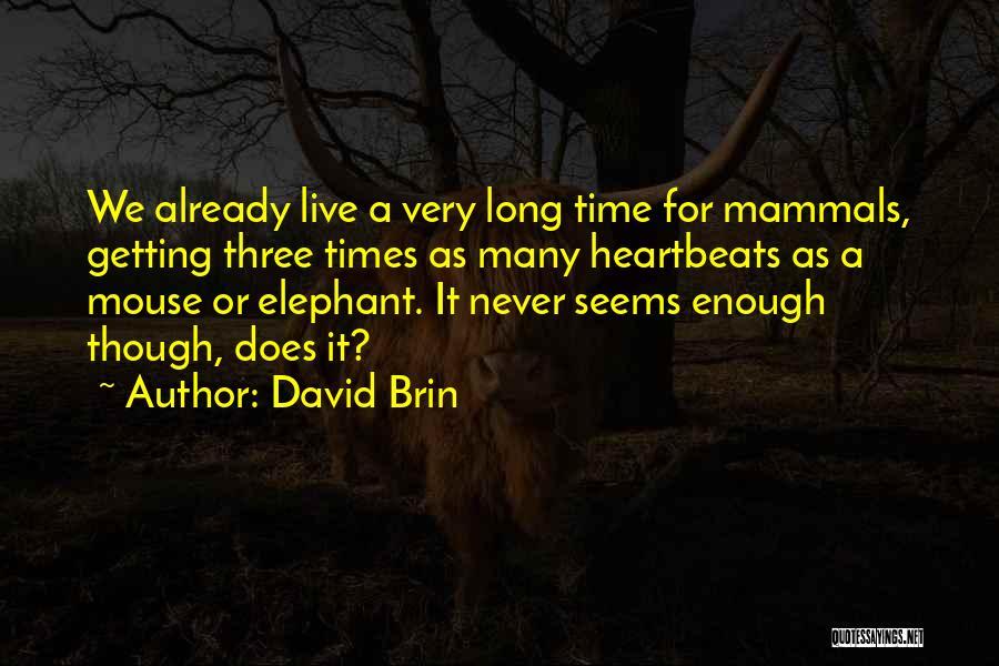 David Brin Quotes 1292124