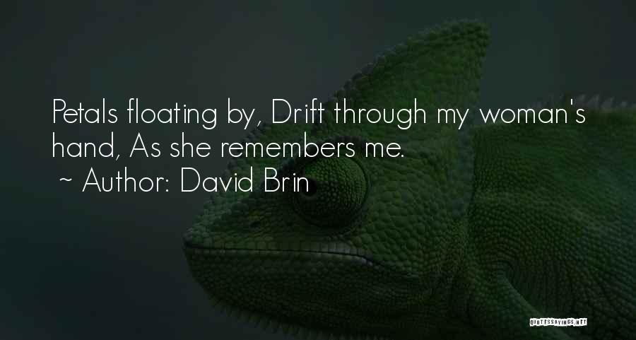 David Brin Quotes 1401393