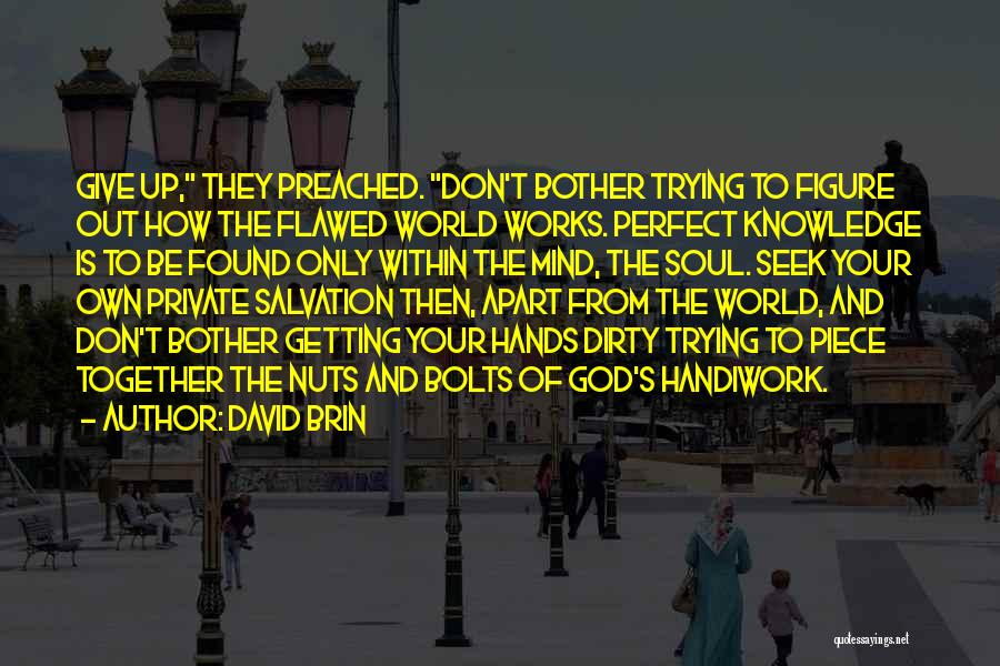 David Brin Quotes 1532974