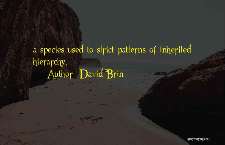 David Brin Quotes 1653754