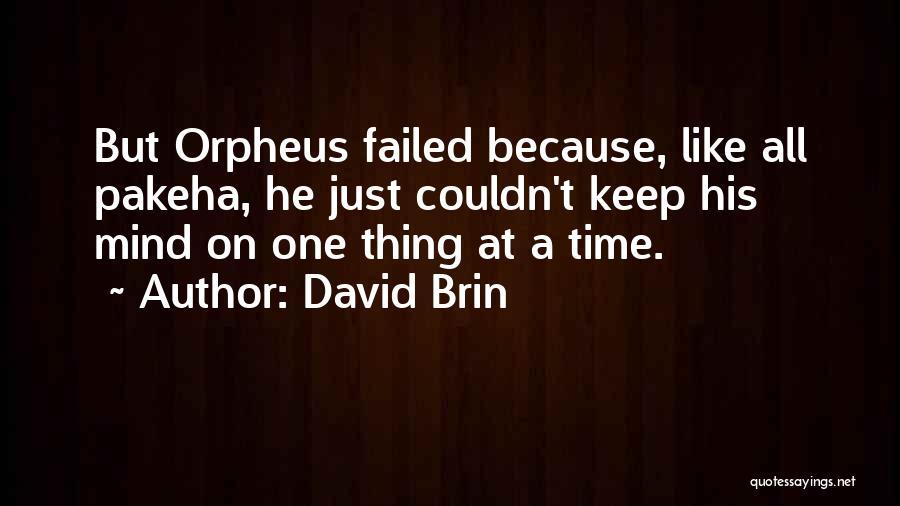 David Brin Quotes 195317