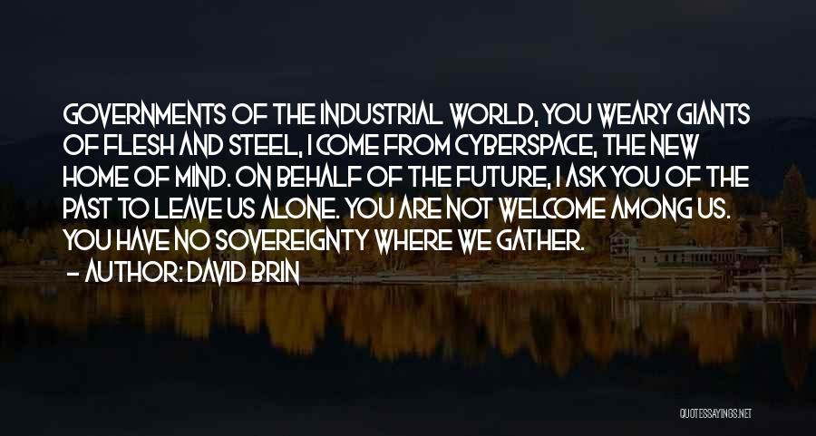 David Brin Quotes 266115