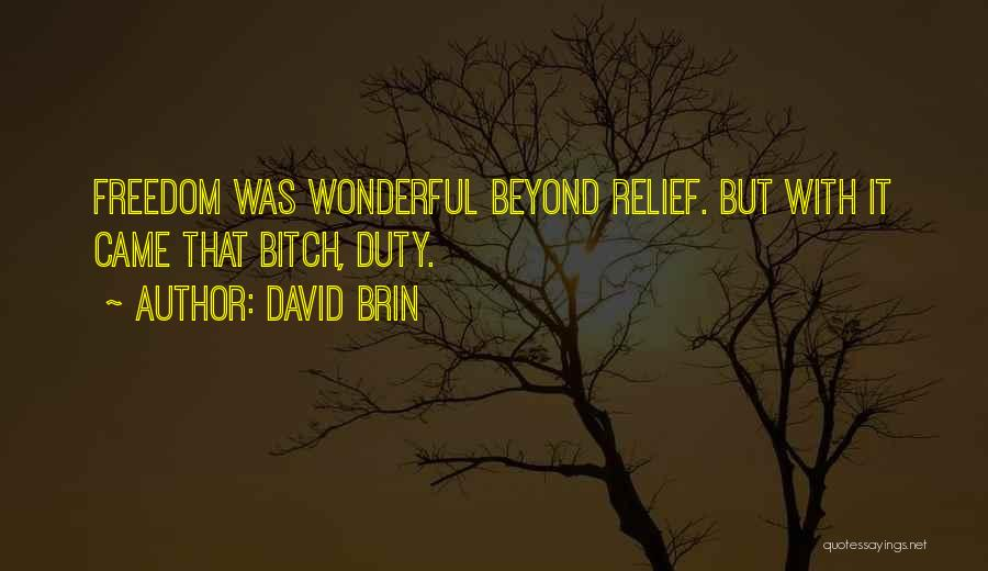 David Brin Quotes 466182