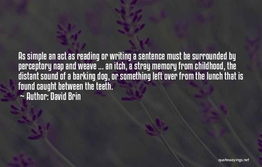 David Brin Quotes 611983