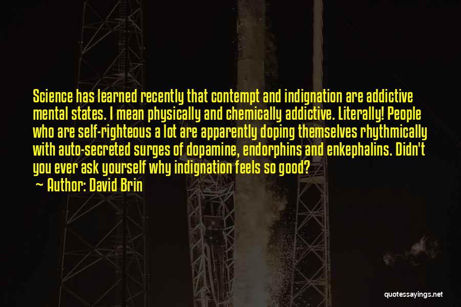 David Brin Quotes 859038