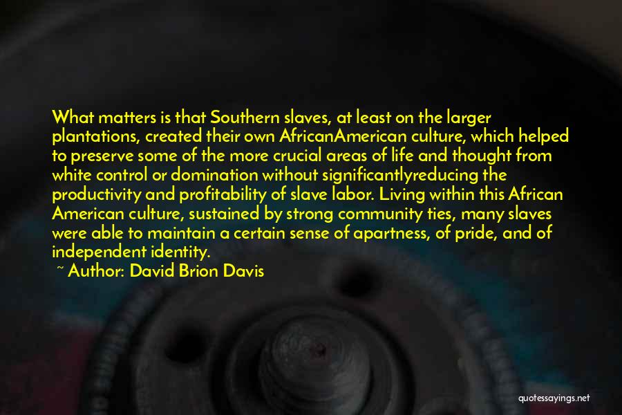 David Brion Davis Quotes 1105526