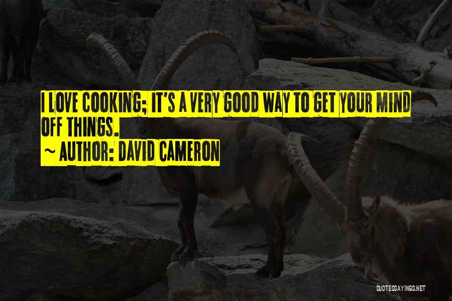 David Cameron Quotes 1390944