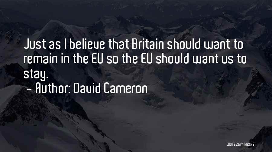 David Cameron Quotes 1597481