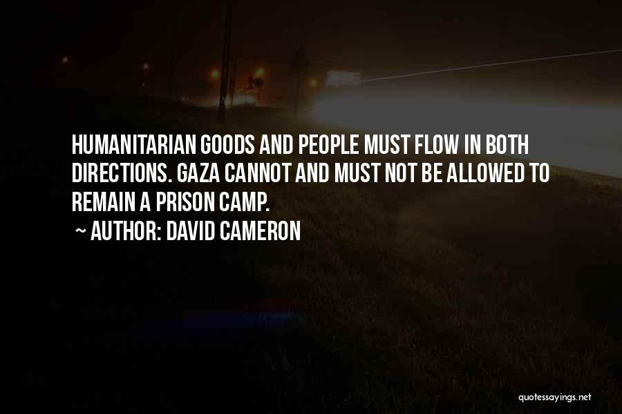 David Cameron Quotes 530919
