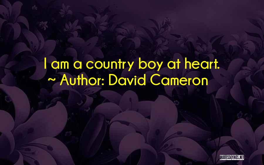 David Cameron Quotes 885252