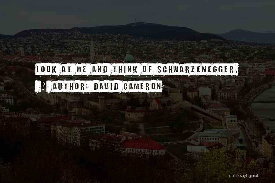 David Cameron Quotes 98201