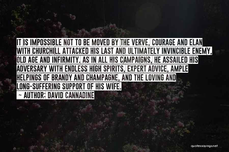 David Cannadine Quotes 764133