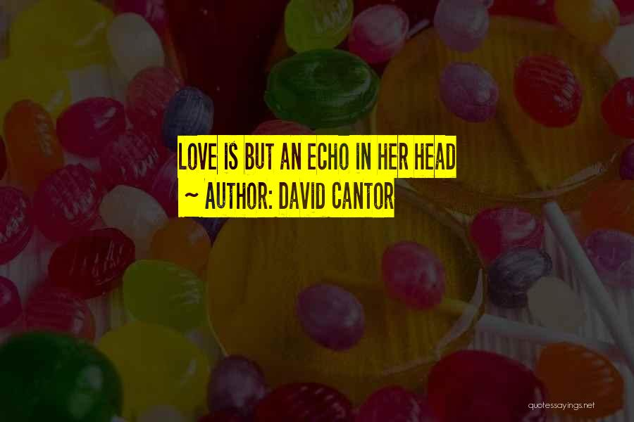 David Cantor Quotes 1352841