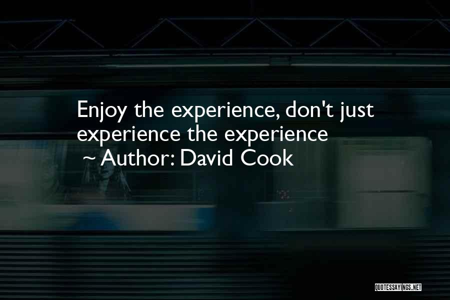 David Cook Quotes 1680954