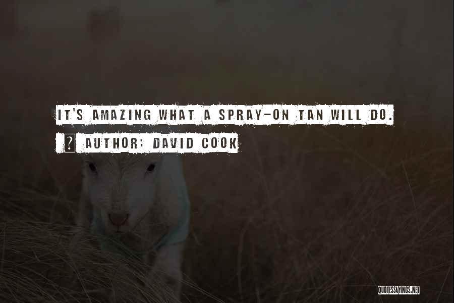 David Cook Quotes 567966