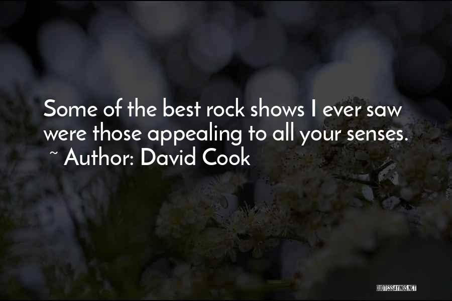 David Cook Quotes 703110