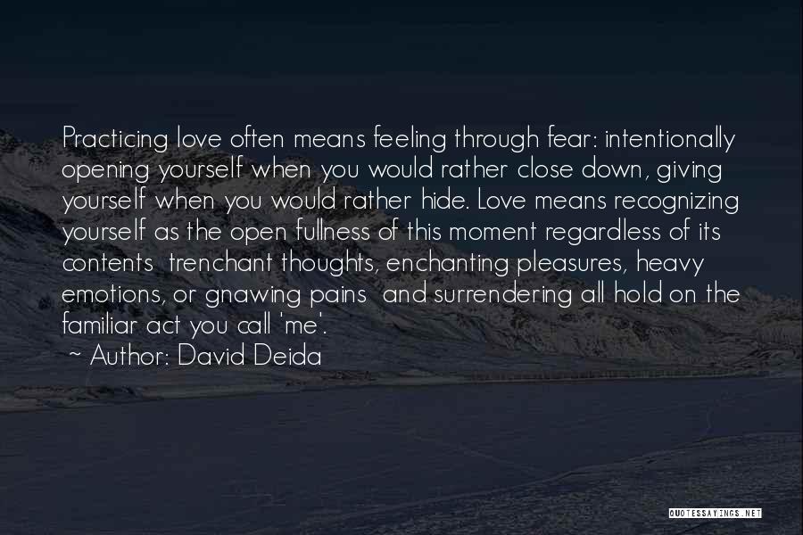 David Deida Quotes 1354411