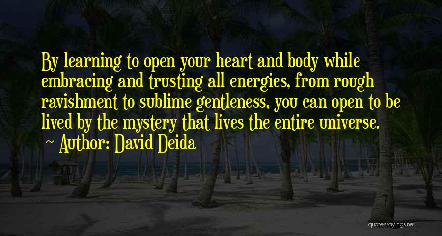 David Deida Quotes 1362334