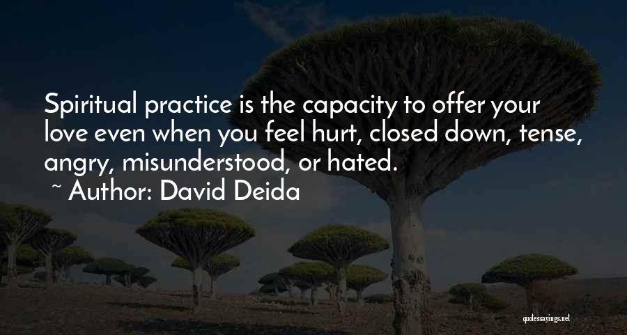 David Deida Quotes 1394413