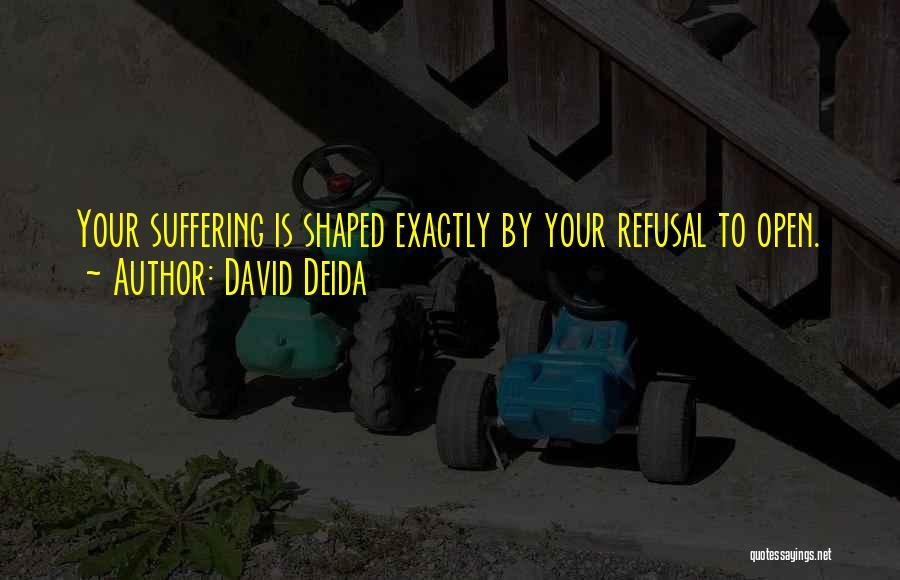 David Deida Quotes 1482766