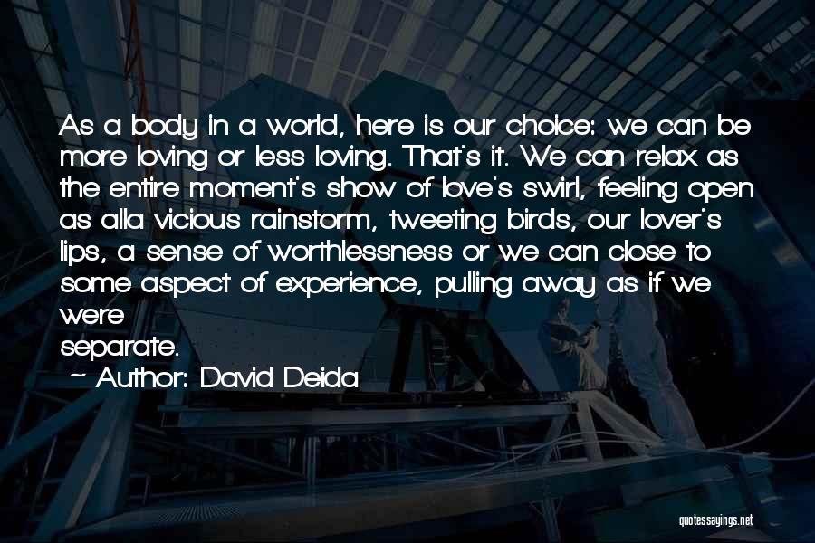 David Deida Quotes 200355