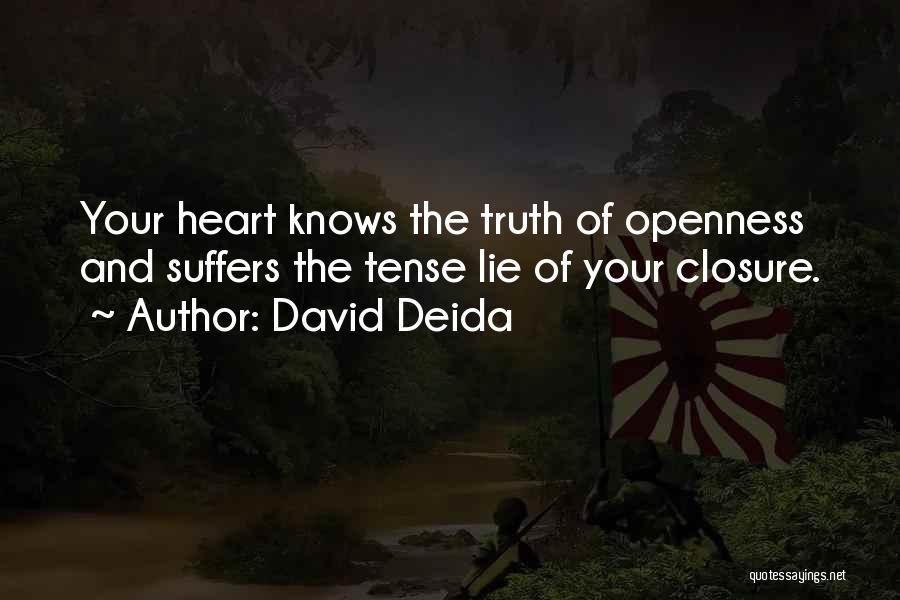 David Deida Quotes 530717