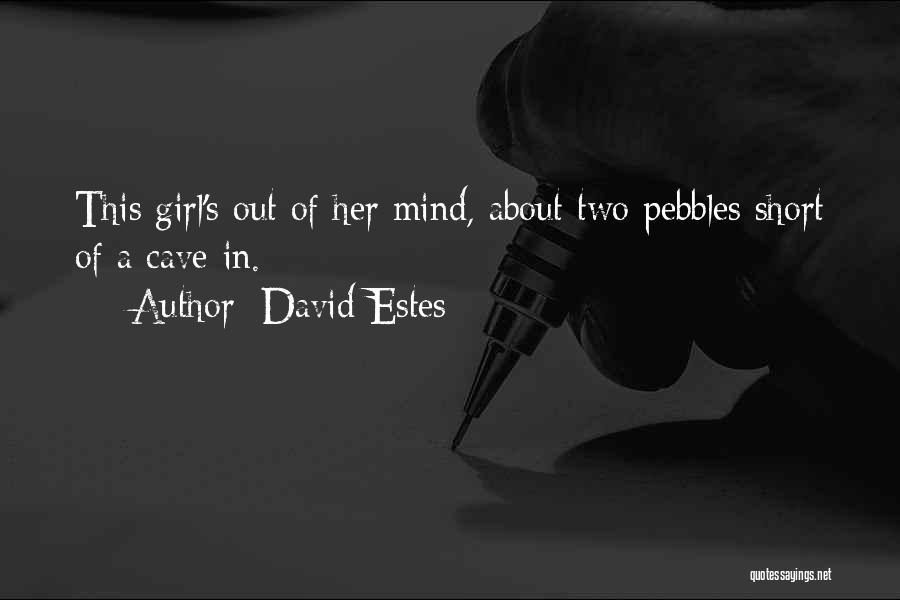 David Estes Quotes 2245456