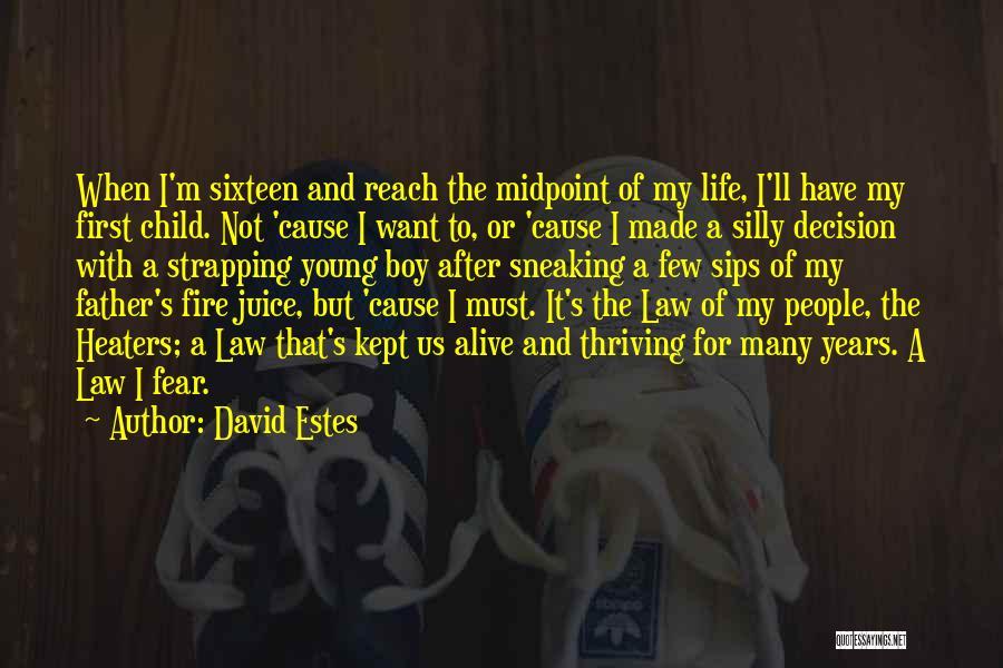 David Estes Quotes 675789