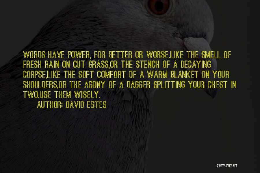 David Estes Quotes 820627