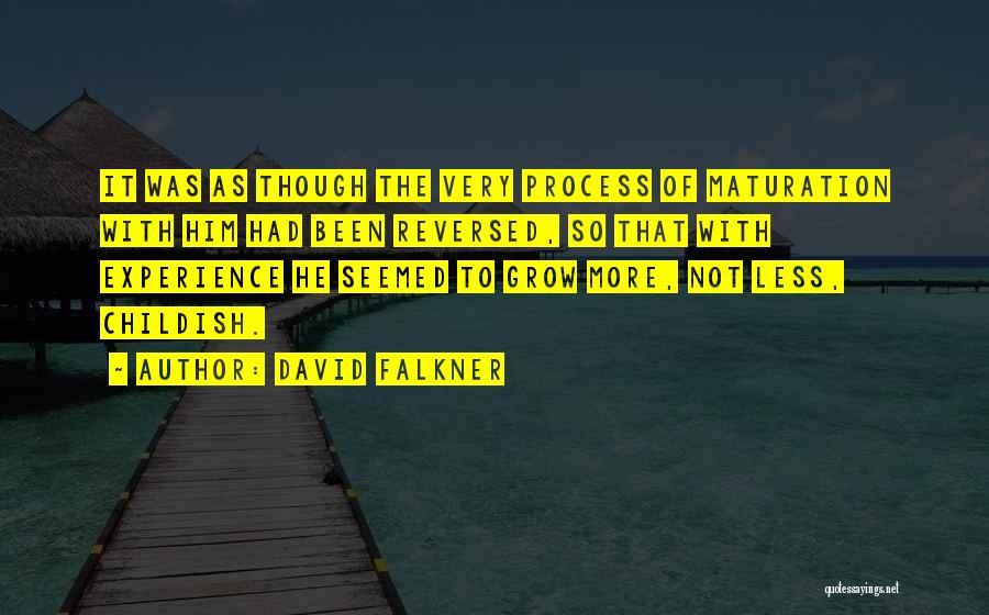 David Falkner Quotes 1318150