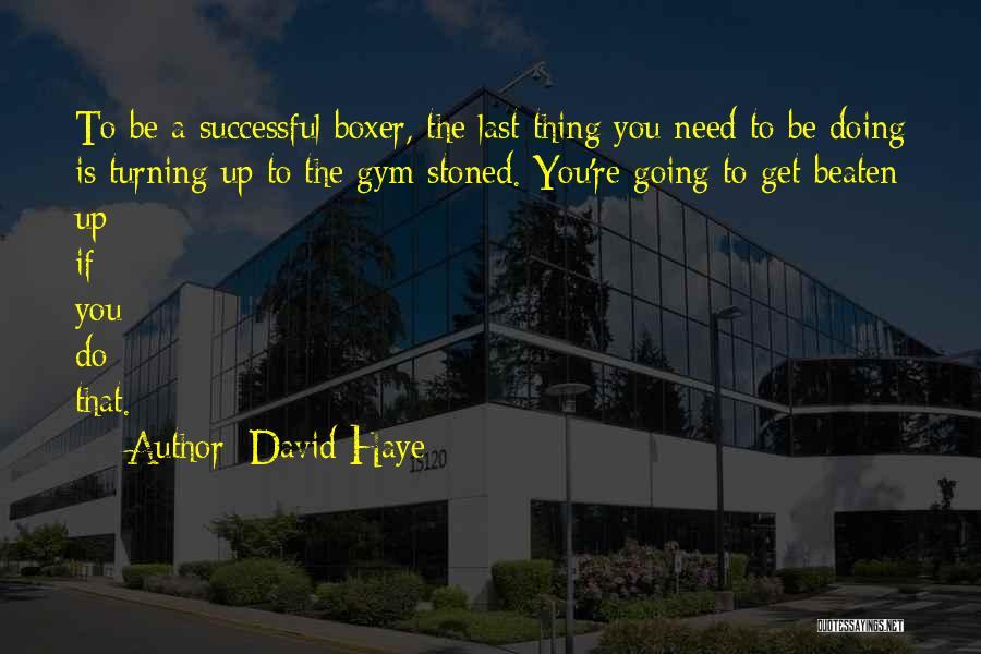 David Haye Quotes 1322663
