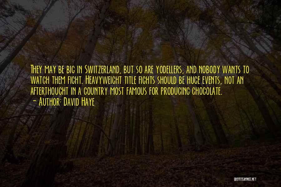 David Haye Quotes 1575901