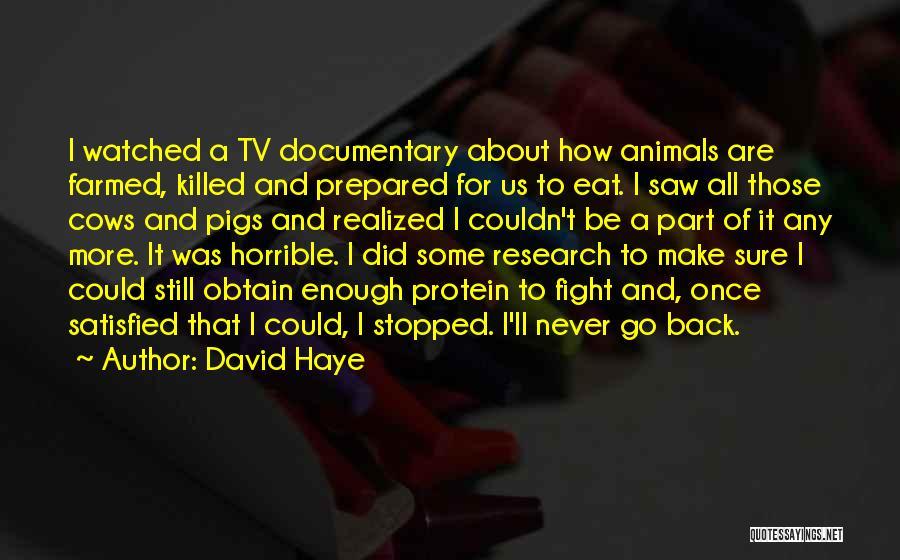 David Haye Quotes 1693203