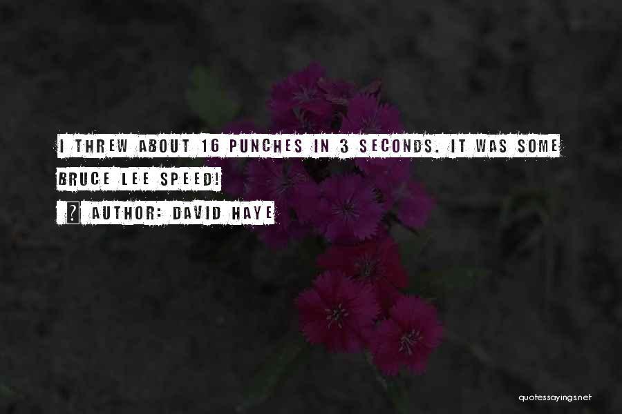 David Haye Quotes 1749460