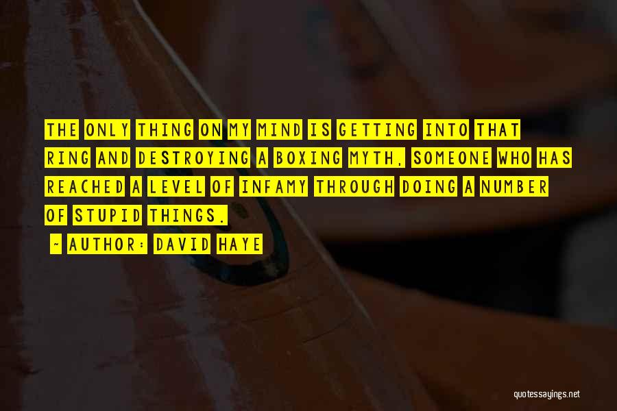David Haye Quotes 507853