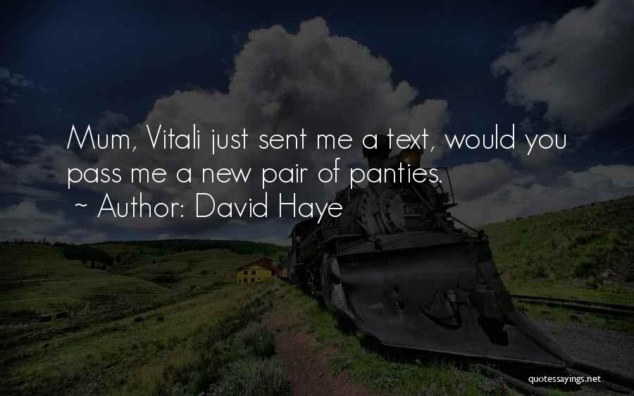 David Haye Quotes 846910