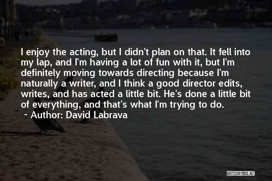 David Labrava Quotes 1115078