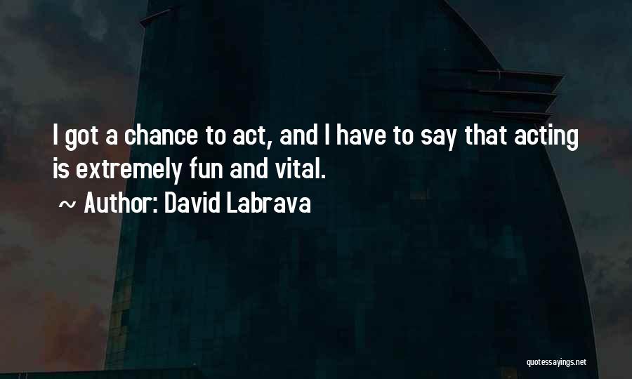 David Labrava Quotes 1892390