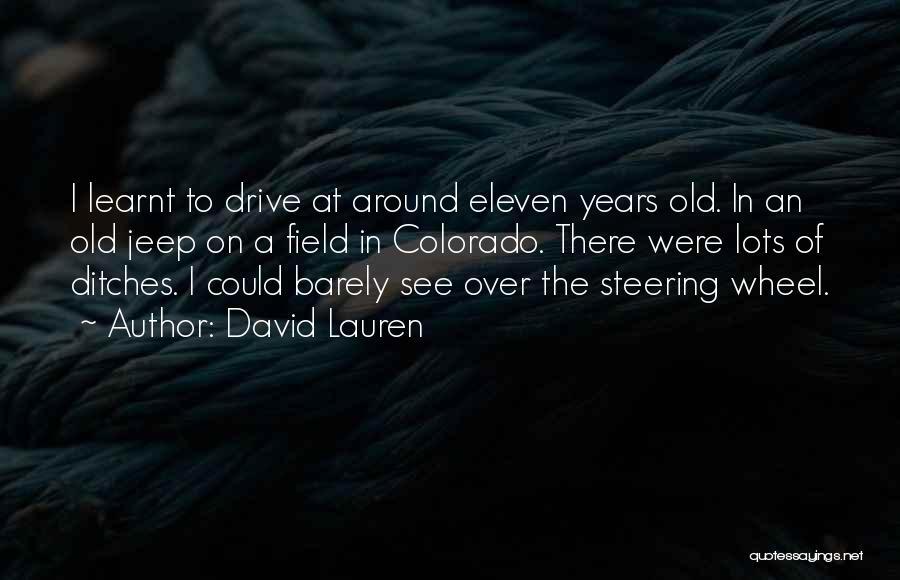 David Lauren Quotes 529961