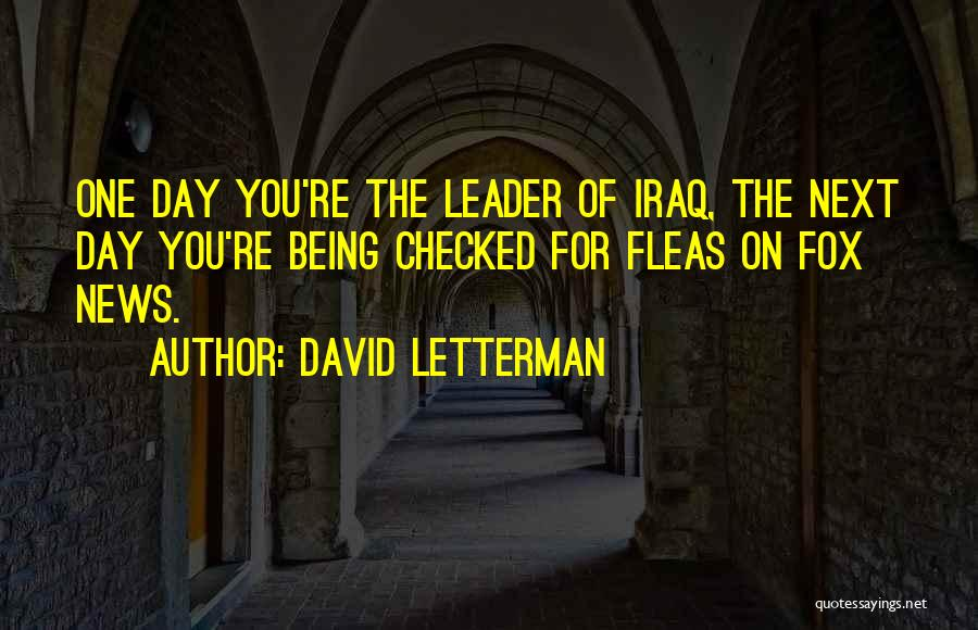 David Letterman Quotes 1137731