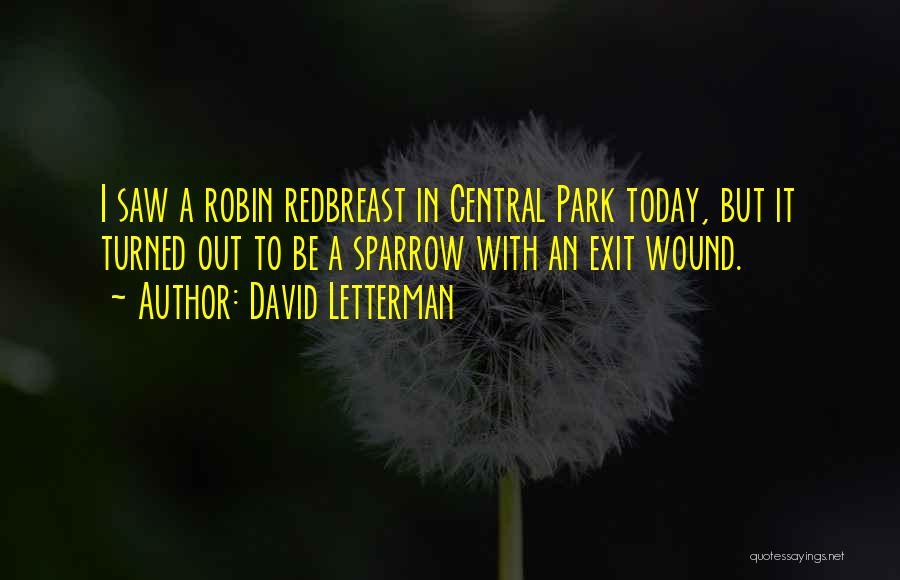 David Letterman Quotes 1470187