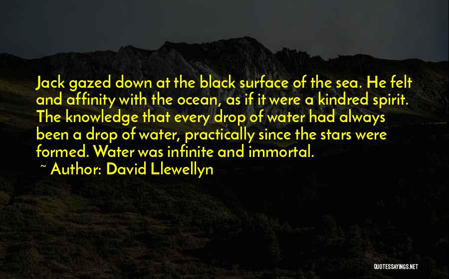 David Llewellyn Quotes 1209837