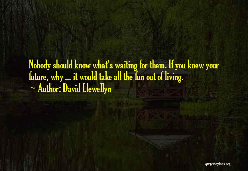David Llewellyn Quotes 1924399