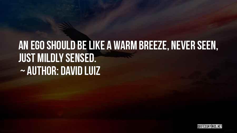 David Luiz Quotes 340710