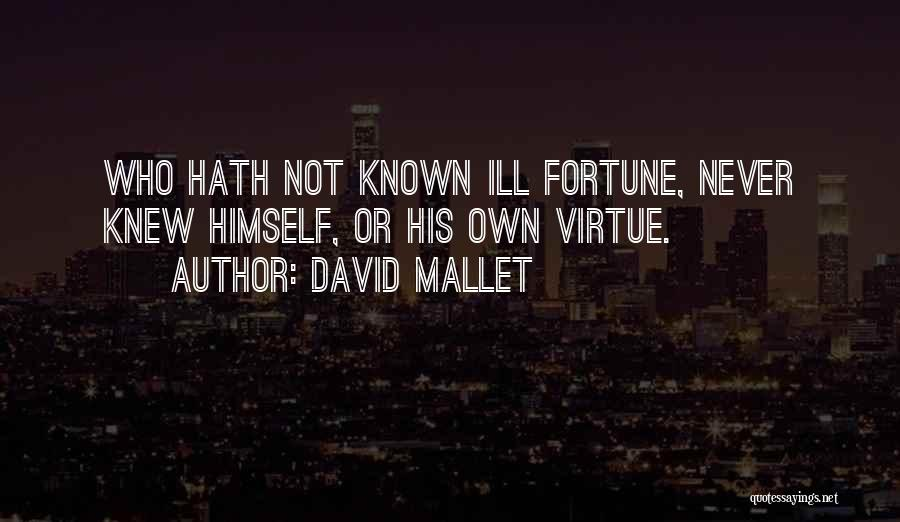 David Mallet Quotes 1582677
