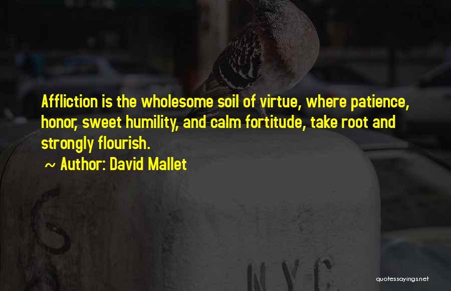 David Mallet Quotes 1791402