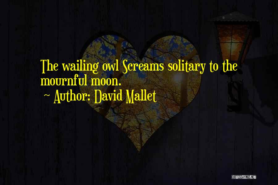 David Mallet Quotes 962972
