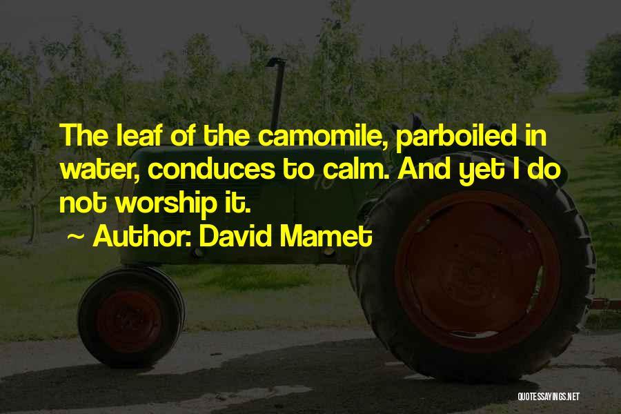 David Mamet Quotes 1978732